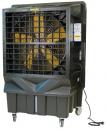 Охладитель воздуха Master BC 220 в Челябинске